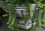 Stone Pots 1