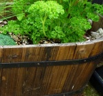 Wooden Pots 1
