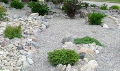 Rock Garden - Street View