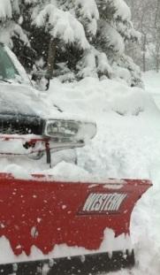 Plow Opt 1