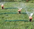 Triple head Watering