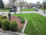 New yard pic